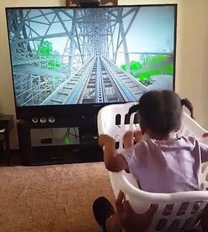 3D_rollercoaster.jpg