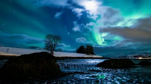 Arctic_Motion01.jpg