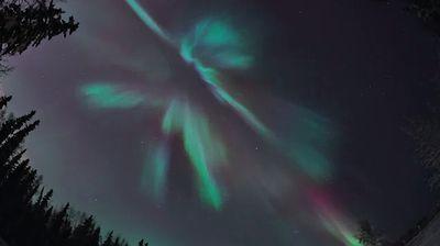 Coronal_aurora.jpg