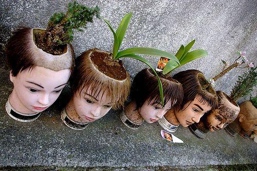 Creepy_garden.jpg