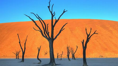 Namib_Desert_Time_Lapse.jpg