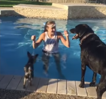 Puppy_Jumps_on_Swimming_Dog.png