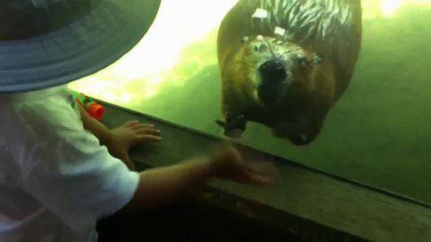 Ryan_meets_beaver.jpg