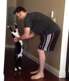 Stretch_Kitty.jpg