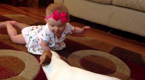 Buddys_Baby_Crawling_School.jpg