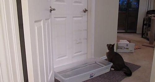Mulder_opening_doors.jpg