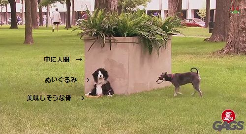 Stuffed_Dog_Attacks_Real_Dog.jpg