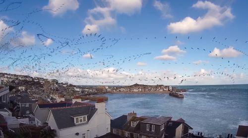 Seagull_Skytrails.jpg