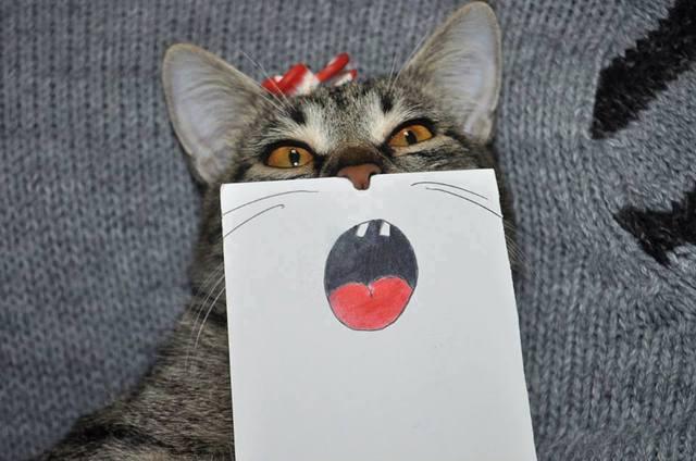 paper_cat05.jpg