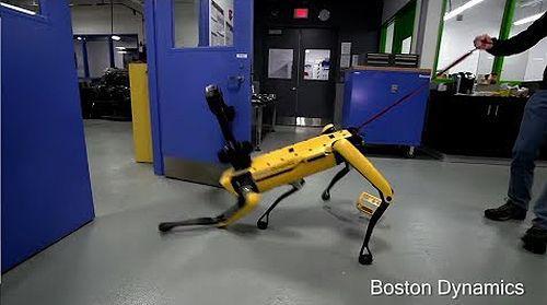 boston_dynamics.jpg