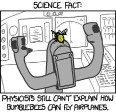 bumblebees.png