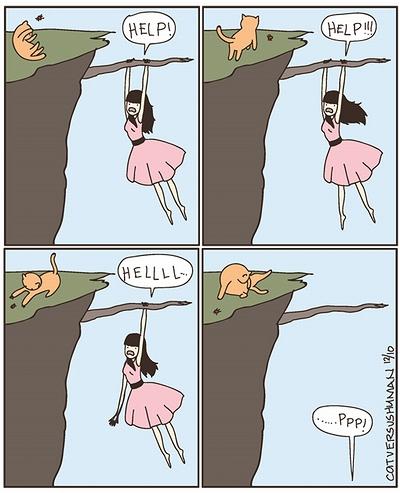 cat_rescue.jpg