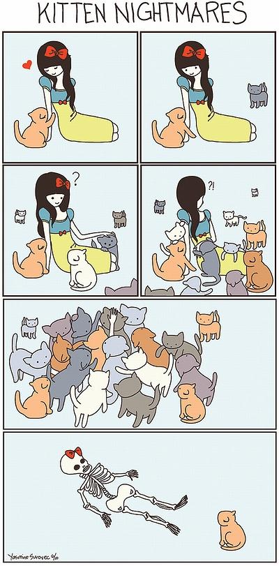 cat_vs_human_03.jpg