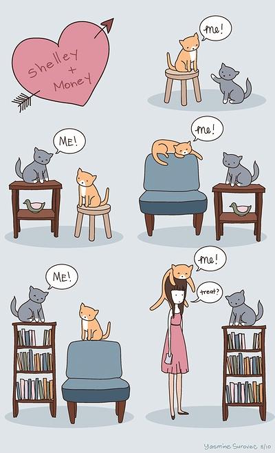cat_vs_human_04.jpg