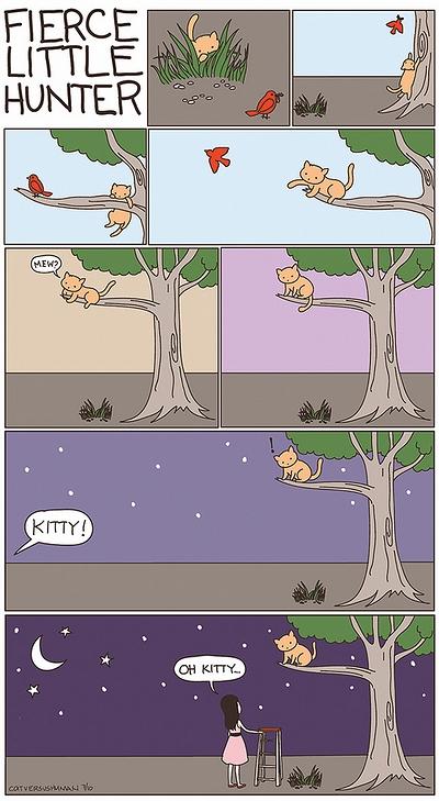 cat_vs_human_05.jpg