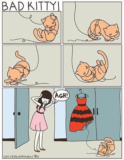 cat_vs_human_06.jpg
