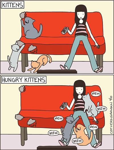 cat_vs_human_07.jpg