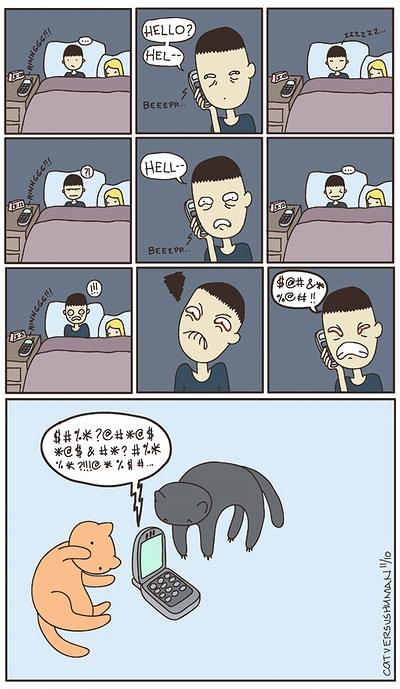 cat_vs_human_10.jpg