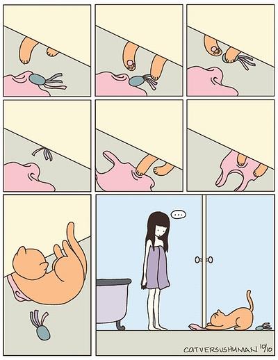cat_vs_human_11.jpg