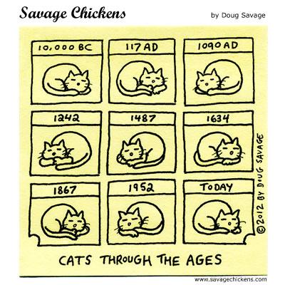 chickencathistory.jpg