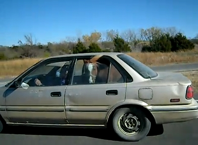horse_in_the_car.jpg