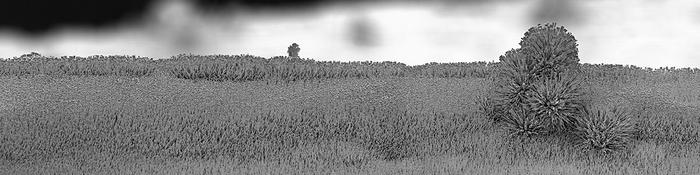 nano_landscape_02.jpg