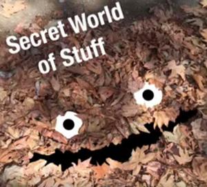 secret_world_of_stuff.png