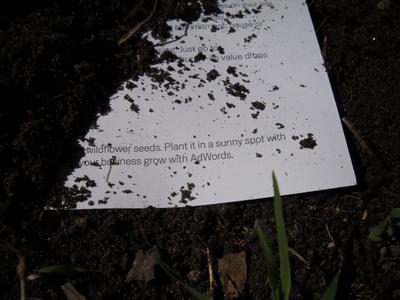 seed_paper_01.jpg