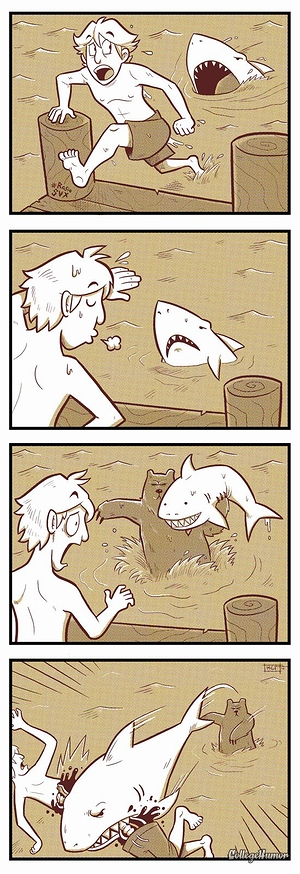 shark_attack_02.jpg