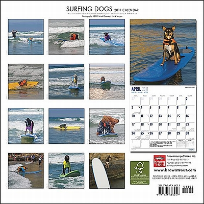surfing_dogs.jpg