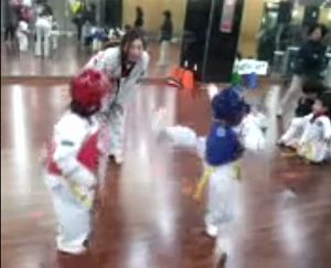 taekwondo_fight.jpg