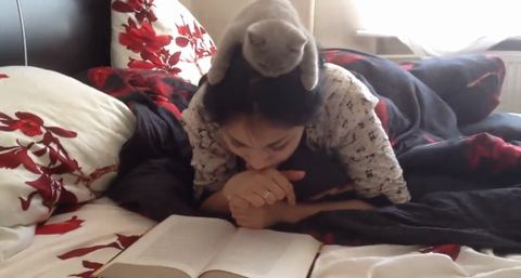Kitten_reading_book.jpg