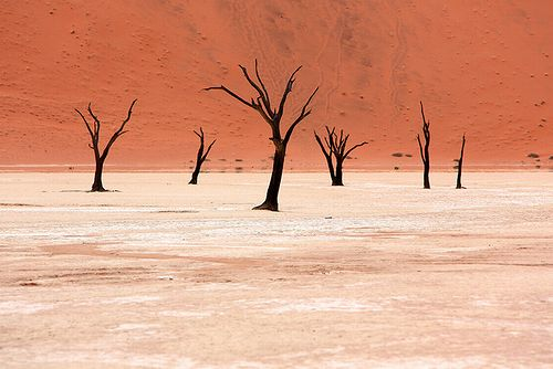 Namibia_photo_02.jpg
