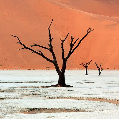 Namibia_photo_03.jpg