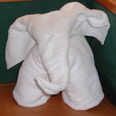 Towel_Elephant.jpg