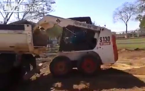bobcat_driver_level_100_agility.jpg