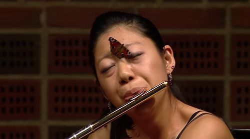 Flautist_plays_on_as_butterfly_lands_on_her_face.jpg