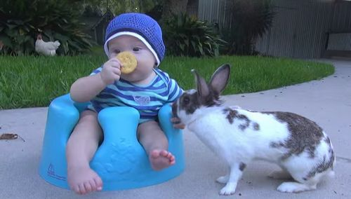 bunny_and_baby.jpg