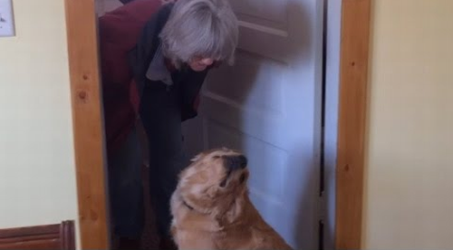 Dog_Refuses_to_Kiss_Her_Owner.png