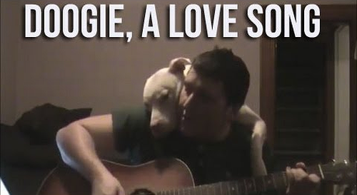 doogie_a_love_song.png