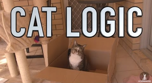 cat_logic.png