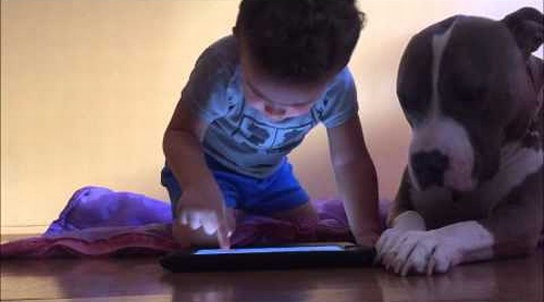 Family_dog_jealous_of_iPad.png