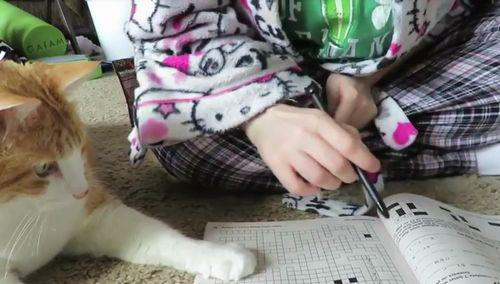 cat_helps_owner_solve_word_puzzle.jpg