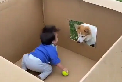 fetch_and_baby.png