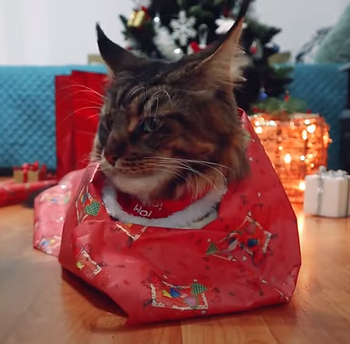 Christmas_gift_cat.png
