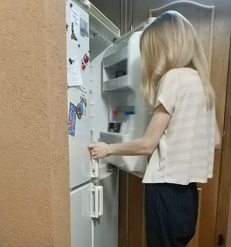 Kitty_Climbs_Into_Fridge.png