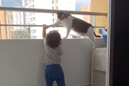 Cat_Keeps_Little_Human_Safe.png