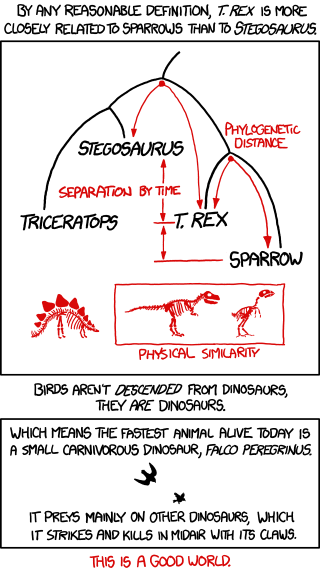 birds_and_dinosaurs.png