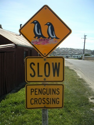 funny_road_sign_05.jpg