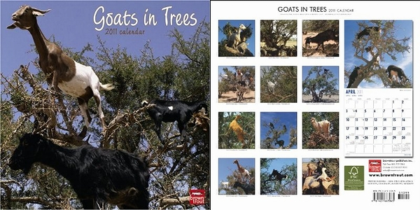goats_in_trees.jpg